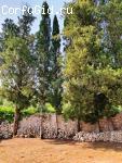 Монастырь святого Онуфрия на Корфу